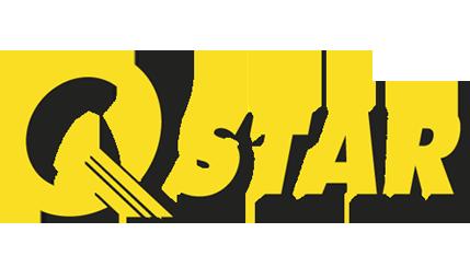logos_qstar